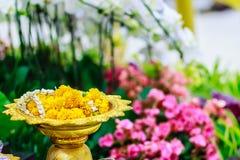 泰国有垫座的样式金黄盘子在好漂亮的东西或人backround  免版税库存照片