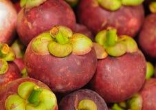 泰国果子的山竹果树 库存照片