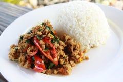 泰国样式混乱油煎了与蓬蒿的辣剁碎的猪肉,并且辣椒服务用蒸的米 免版税库存照片
