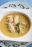 泰国椰子的咖喱 免版税库存图片