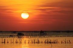 泰国渔房子剪影  免版税库存图片