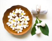 泰国温泉按摩压缩球,草本球和治疗温泉,放松和与花,泰国的健康关心 图库摄影