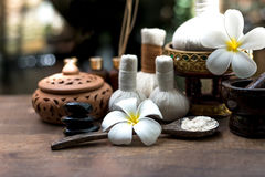 泰国温泉按摩压缩球,草本球和治疗温泉,放松和与花,泰国的健康关心 免版税图库摄影