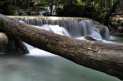 泰国瀑布 免版税库存图片