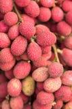 泰国狂放的果子 图库摄影