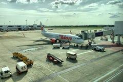 泰国狮子航空公司装货货物到飞机里 免版税库存照片