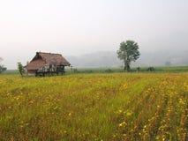 泰国的山 库存图片
