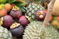 泰国的果子 免版税库存照片