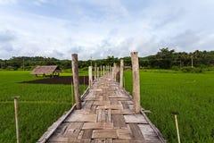 泰国的美丽的竹桥梁,在绿色r的Zutongpae桥梁 免版税图库摄影