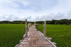 泰国的美丽的竹桥梁,在绿色r的Zutongpae桥梁 免版税库存图片