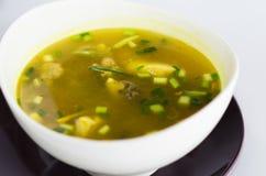 泰国的辣鸡汤 免版税库存图片