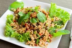 泰国的鸡丁沙拉 库存照片