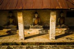 泰国的ayuttaya的菩萨 库存照片