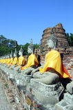 泰国的buddhas 图库摄影