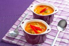 泰国红色咖喱汤 库存图片