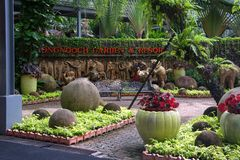 泰国芭达亚热带公园Nong Nooch,公园的名字博览会的 免版税库存图片