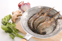 泰国被烘烤的虾的食谱用玻璃面条 库存图片
