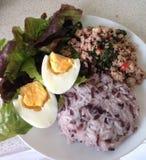 泰国辣蓬蒿猪肉用红色茉莉花米 库存图片