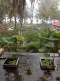 泰国雨天 免版税库存照片