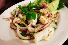 泰国食物乌贼辣沙拉用草本 图库摄影
