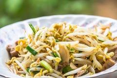 泰国食物新芽混乱 图库摄影