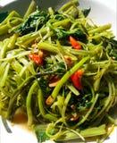 泰国食物混乱油炸物荣耀早晨用盐味的大豆和辣椒 库存照片