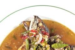 泰国食物辣鲭鱼 免版税库存图片