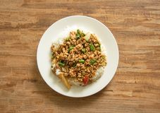 泰国食物,与蓬蒿的混乱油煎的猪肉离开 免版税图库摄影