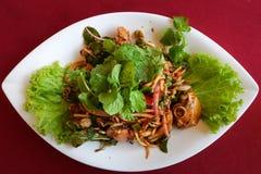 泰国食物,用血液鸟蛤做的A辣泰国沙拉 免版税库存图片