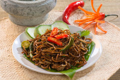 泰国食物;辣油煎的面条用猪肉 图库摄影