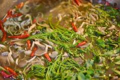 泰国食物 库存照片