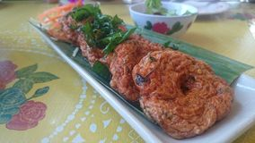 泰国鱼薄煎饼 图库摄影