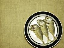 泰国鲭鱼在拷贝空间褐色颜色粗麻布麻袋布油煎了 免版税库存图片