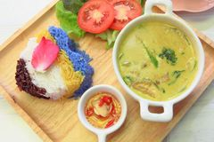 泰国鸡绿色咖喱用米 免版税库存图片