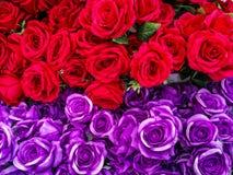 泰国,安排,秀丽,生日,开花 图库摄影
