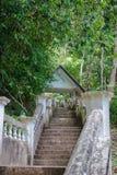 寺庙在密林 库存照片