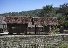 泰国, Chiang Mai,卡伦村庄 免版税库存照片