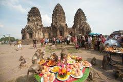 泰国猴子党(泰国猴子自助餐) 免版税库存图片