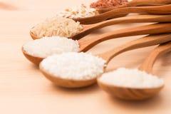 泰国货物米是泰国米eaperts和Jap的创作 免版税库存图片