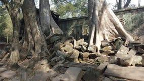泰国 库存图片