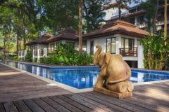 泰国 Ko张 旅馆张Buri在水池的手段大象 图库摄影