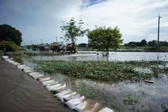 泰国bangbuathong的洪水 库存图片