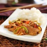 泰国panang牛肉咖喱 免版税库存照片