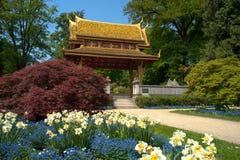泰国salo的寺庙 库存照片