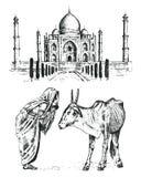 泰姬陵一个古老宫殿在印度 有母牛的修士 传统动物 地标或建筑学 传统陵墓 库存例证