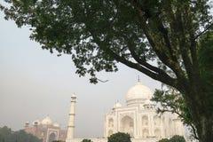 泰姬陵在阿格拉,北方邦,从另外看法的印度 免版税图库摄影