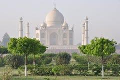 泰姬陵,从后面,阿格拉印度 库存图片