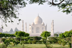 泰姬陵,从月亮庭院,阿格拉印度 库存照片
