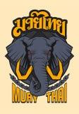 泰拳大象神圣的动物 皇族释放例证