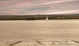 泰晤士河出海口英国 免版税库存照片